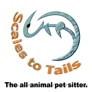 Scales To Tails - Pet sitting and dog walking service